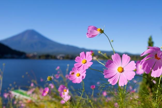 Гора фудзи в японии летом