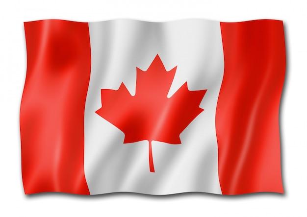 白で隔離カナダの旗