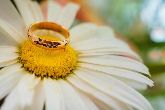 Золотое обручальное кольцо на ромашке