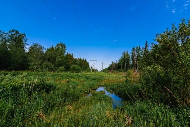 夏の日の森の高圧送電線