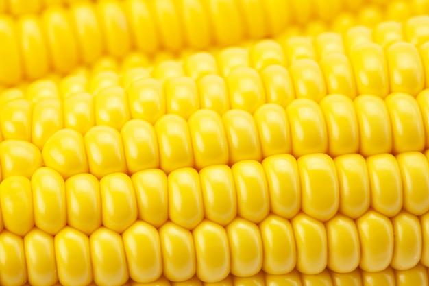 トウモロコシの穂軸をクローズアップ
