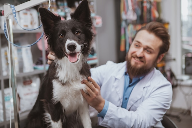 Бородатый веселый мужчина ветеринар улыбается, гладит собаку в своей клинике