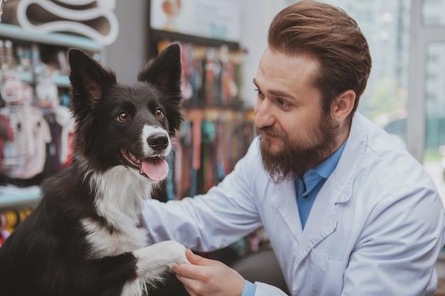 Молодой мужской ветеринар держа лапку милой счастливой собаки, работая с животными на его ветеринарной клинике.
