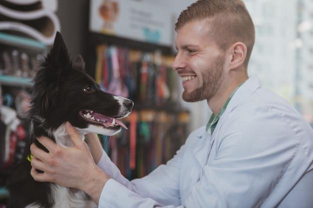 ハンサムな若い男性獣医が嬉しそうに笑って、美しい健康な犬と向かい合って座っています。