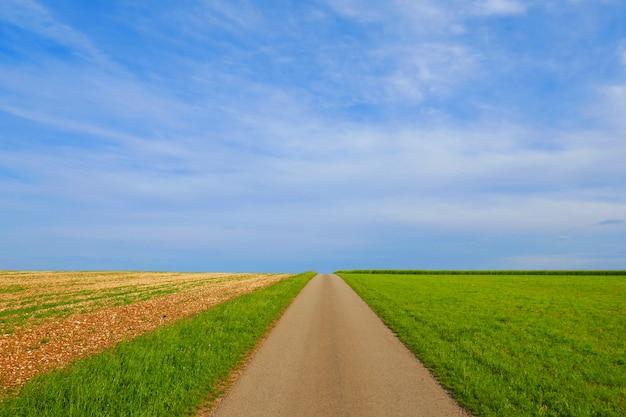 道路。青い空の下のフィールド道路。