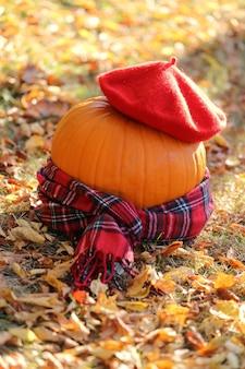 秋のコンセプト。ハロウィン。ベレー帽と市松模様のスカーフのカボチャの装飾。