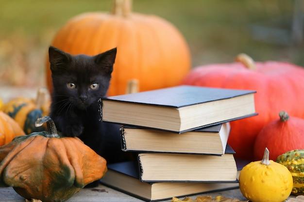 ハロウィーンの秋の本