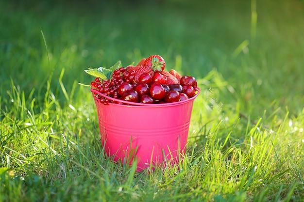 Розовое ведро с ягодами клубники, черники, вишни, красной смородины на зеленой траве.