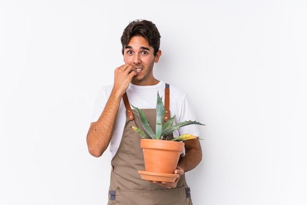 Молодой кавказский садовник человек, держащий завод изолированные кусаться ногти, нервный и очень тревожно.