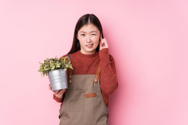 若い中国の庭師の女性の手で耳を覆って分離された植物を保持しています。