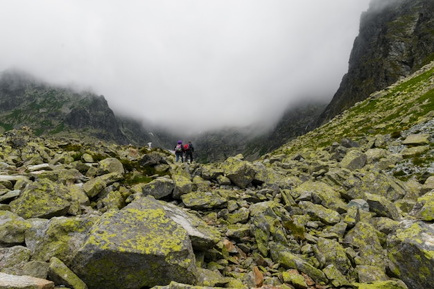 Альпинисты с рюкзаками поднимаются на гору
