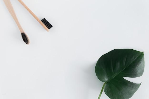 廃棄物ゼロのコンセプト。白い背景のフラットレイコピースペースにモンステラの葉と自然のエコ竹歯ブラシのフレーム