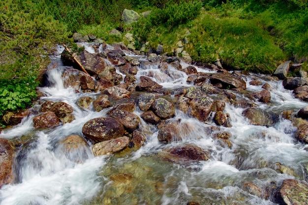 Красивая горная река в высоких татрах словакия