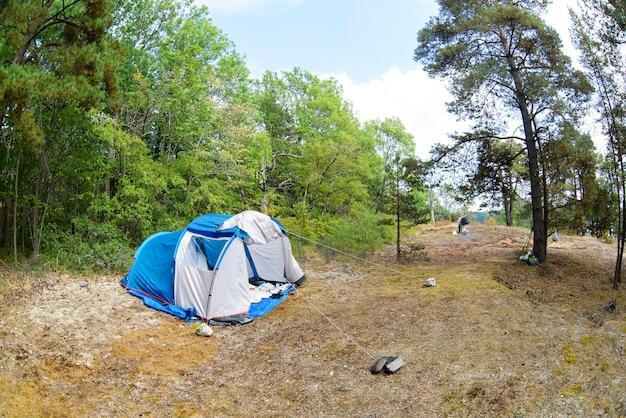 森の中のテントと緑の芝生。一時的な宿泊施設を作ることで自然に近づく旅