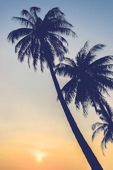日没ヤシの木のシルエット