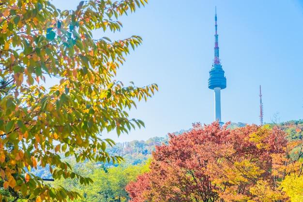 街並みメープルタワーを構築し、葉