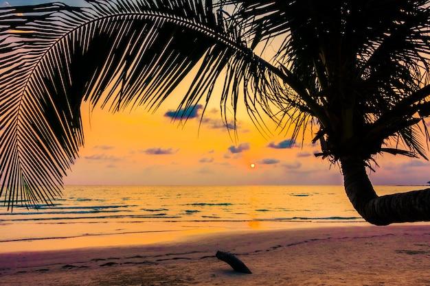 旅行海の熱帯の島のココナッツ