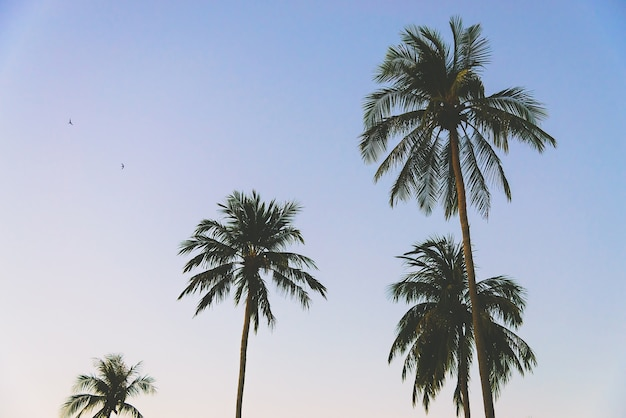 ロサンゼルス熱帯フィルタ楽園の島