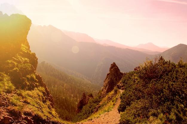 西部の緑の植物屋外の山々