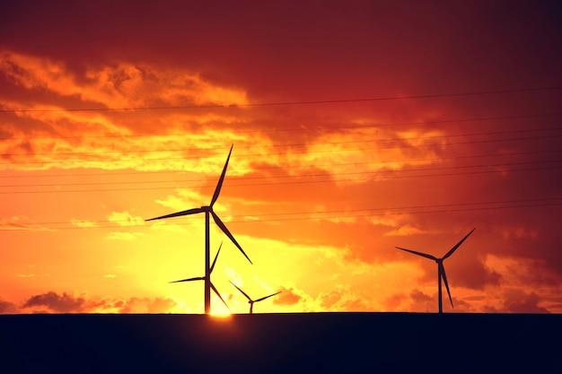 風車。代替エネルギー。
