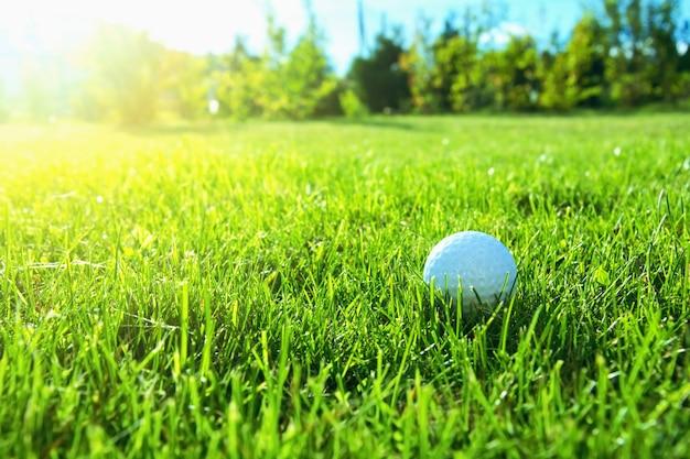 Игра в гольф.