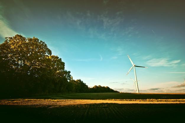 フィールド上の風車。