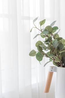 窓の近くのカーテンの白い背景にミニマルな白い花瓶のユーカリの枝