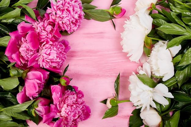 美しいピンクの牡丹の花、トップビュー