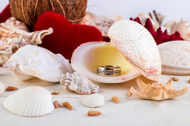 婚約指輪の貝殻。