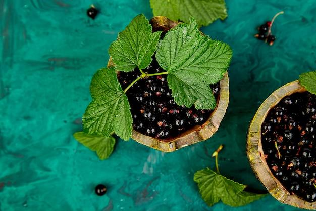 ブラックカラントの果実、葉、ブラックカラント