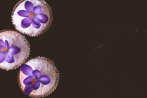 黒いベルベットの背景にクロッカスの花で飾られたマフィン。春。上面図。フレーム。コピースペース。