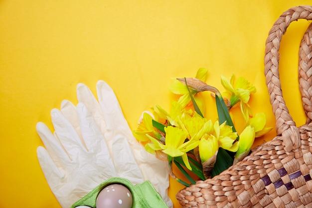 Коронавирус пасхальный символ яйца и нарцисса цветы в корзине возле защитных медицинских перчаток