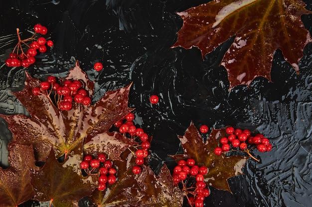 秋の背景に秋のカエデの紅葉、ガマズミ属の木の果実