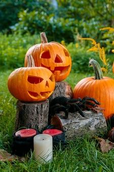 ハロウィン。ジャック・オ・ランタン。キャンドルと緑の森、屋外のクモに近い笑顔で怖いカボチャ。
