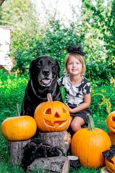 ハロウィン。ジャック・オ・ランタンの装飾、トリック・オア・トリートの間にあるラブラドールの近くの黒い服を着た子供。