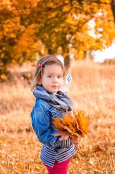Маленькая девочка с желтыми осенними золотыми листьями в ее руке. детская игра на открытом воздухе в парке.