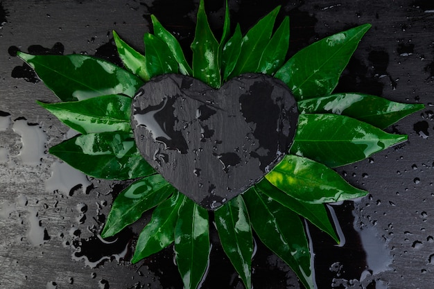 黒いスレート板カードノートと葉で作られた創造的なレイアウト。