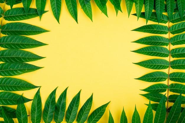 Абстрактные рамки границы тропических зеленых листьев на желтой стене, скопируйте пространства для текста