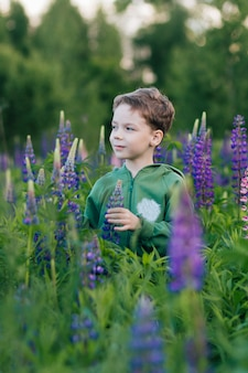 ルピナスの夏の畑で少年のポートレート