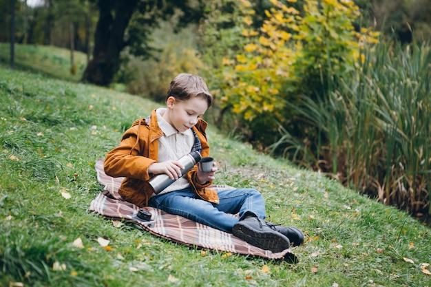 かわいい男の子は歩くし、カラフルな秋の公園でポーズをとる
