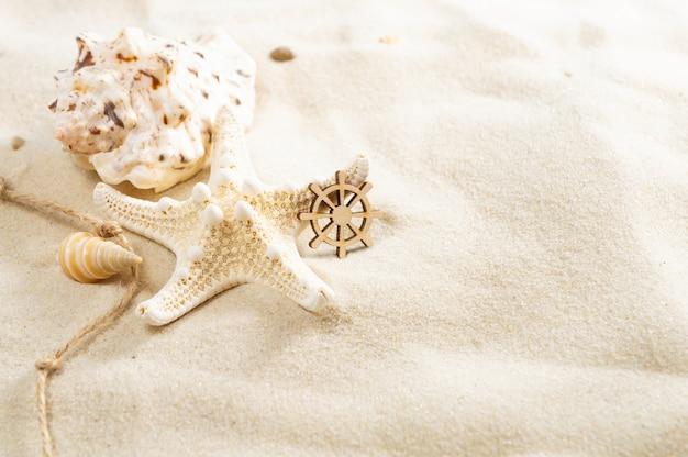 コピースペースで砂の上の貝殻。夏のビーチの休日の概念。