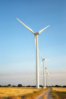 風力エネルギー。麦畑と青い空