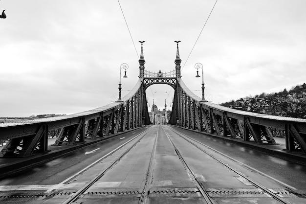 ブダペスト、ハンガリーの美しい自由の橋。黒と白の幾何学的な写真