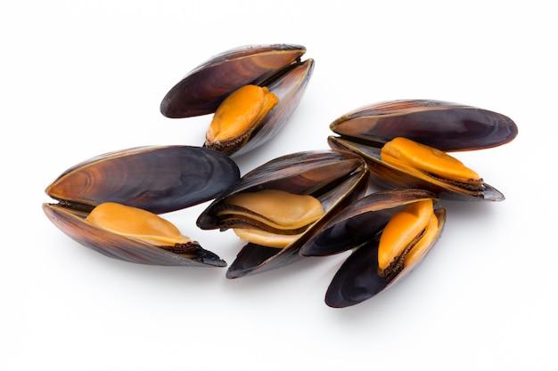 ムール貝は、白い背景で隔離。シーフード。