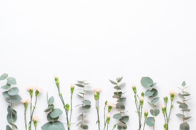 花とユーカリプタスの組成物。ホワイトスペースにさまざまなカラフルな花で作られたパターン。フラット横たわっていた生活。