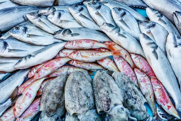 カウンターに美しく並べられたのは、新鮮な魚です。