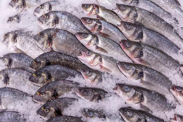 Красиво разложенная охлажденная рыба на льду в супермаркете.