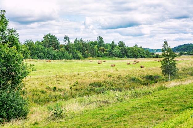 干し草の山と森の端の緑の野原