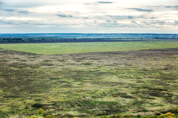 Большое зеленое поле. прекрасный вид сверху. бесконечный космос.