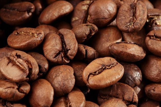 孤立したコーヒー豆。
